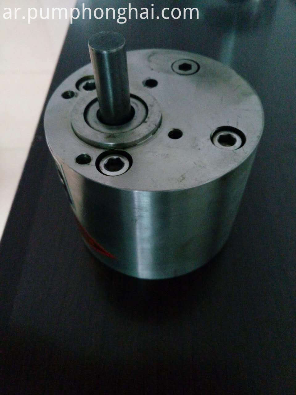 Gear Type Hydraulic Oil Pump 4