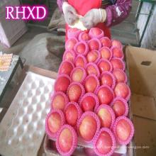 Chine fuji pommes meilleur prix fuji apple