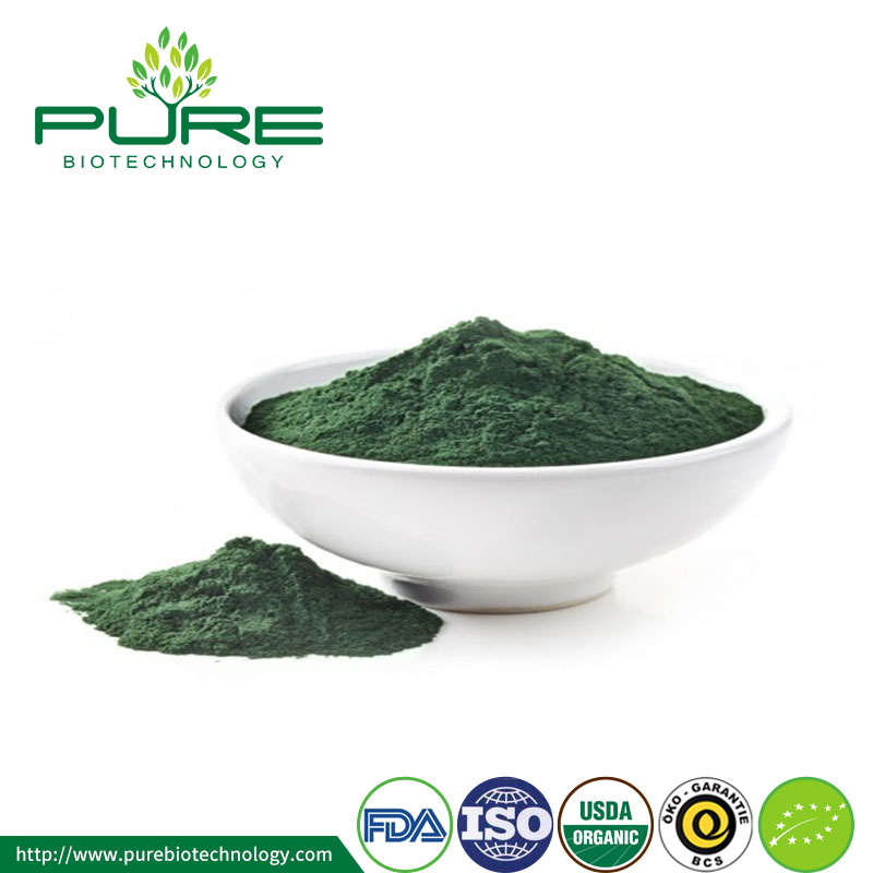 organic Chlorella powder0907