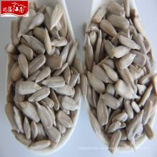 Großhandel hohe Qualität Sonnenblumenkerne Samen