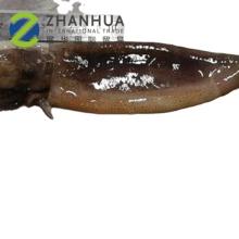 Nouveau tube de capture Illex Squid & Tentacle Squid t + t T&T