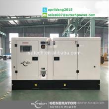 2017 neue Lager! 100Kva stille generator sets mit wasserdichten gehäuse