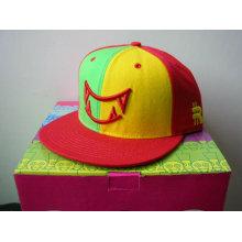 custom snapback trucker cap /hip-hop caps with embroidery