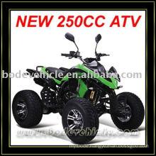 EEC 250cc ATV Quad (MC-381)
