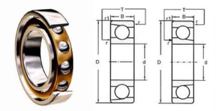 Contact Angular 25 Ball Bearing