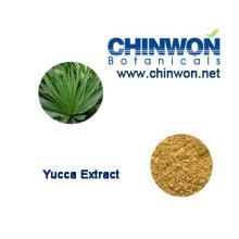 Zuchtmedizin Yucca Schidigera Sarsaponin 60%