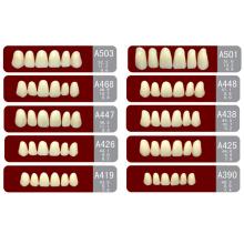 OEM Good Price Full Mouth 2 Layer Acrylic Resin Teeth
