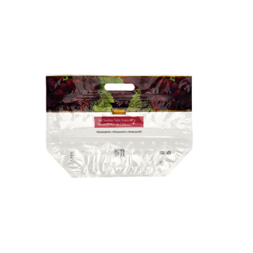 Fruit Packaging Zip Slider Bag mit Griff