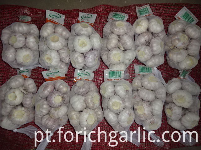 Regular White Garlic