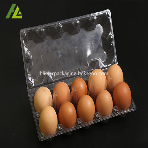 clear egg tray
