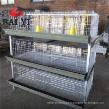 Cage automatique de transport de poulet de gril de type H (meilleure vente de prix)