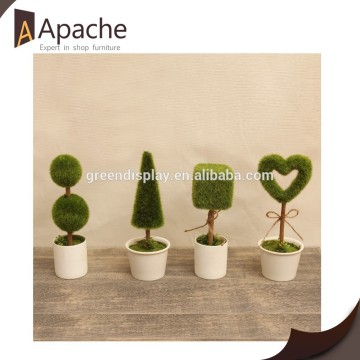 Popular for the market factory supply Pretty Green Potted Plant for 2015
