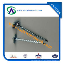 Hot Sale Good Quality Roofing Nail (ADS-RN-04)