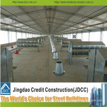 Best Quality Poultry Shed