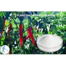 Regulador de Extracto de Planta Pgr Kintin