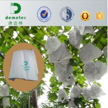 Insectes d'eau jetables bon marché contre le raisin de fruit élèvent des sacs pour empêcher le brûlage de soleil