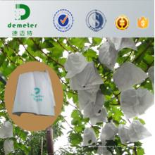33X43cm 36g blanc Micropore papier bonne respirabilité sac de papier de couverture de raisin populaire utilisé au Pérou, marché du Chili