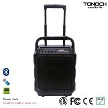 8 Zoll Portable Consumer Speaker Audio Equipment mit Bluetooth und Akku