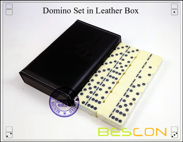 Domino Set in Leather Box-2