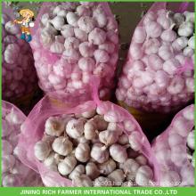 Fresh Style New Crop Fresh Garlic Pure White Garlic 4.5cm In 20kg Mesh bag