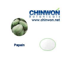 Natural Exfoliation Ingredient Papaya Extract