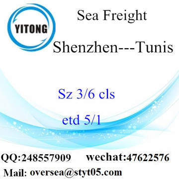 Shenzhen Port LCL Consolidation To Tunis