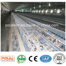 Steel Structure Chicken Coop for Pullet Chicken Cages