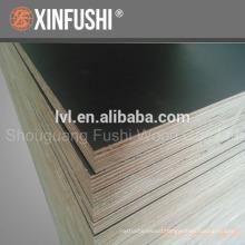 F17 concrete plywood for Australia