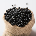 Wholesale Green Food Black Kidney Beans High Quality