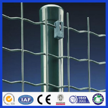 high quality professional Euro fence