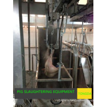 Pig Slaughter Equipment--Stunning Machine