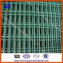 Mesh en acier soudé revêtu de PVC (DHWP02)