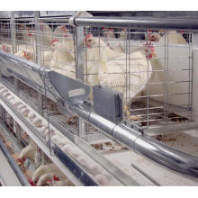 Hot Sale Layer Battery Chicken Cage for Egg