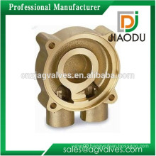 Design classical brass alloy die casting mould