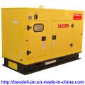 Silent Heavy Duty Diesel Generator (BU30KS)