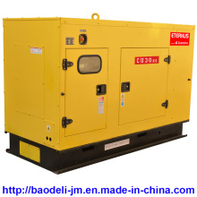 Générateur diesel silencieux à service lourd (BU30KS)