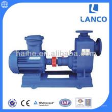 Industrielle Pumpe