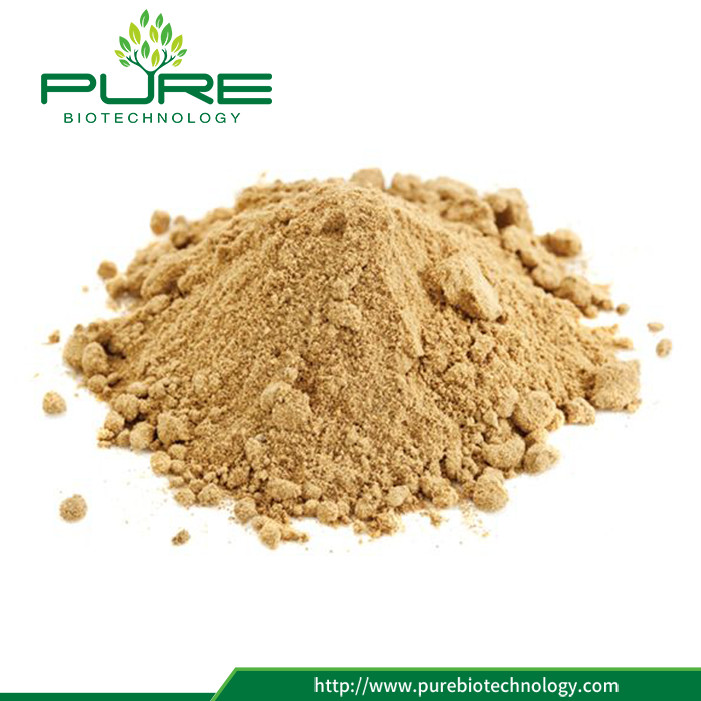 Pure Natural Maca Root Extract Powder 3