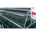 Chicken laying cage chicken farming