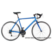 Alloy Frame Road Bicycle 700c Wheels with 14 Speeds