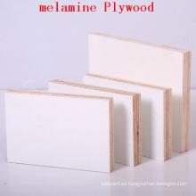 Hoja barata de la madera contrachapada, hoja de madera contrachapada de la melamina, hojas compuestas de la madera contrachapada