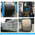 Double insulated cable 6181Y for building wiring