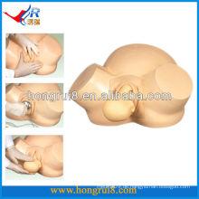 ISO Vakuum Lieferung Modell Advanced Hebammen Training Modell Pregnan Lieferung