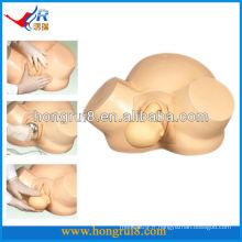Modèle de livraison sous vide ISO Modèle avancé d'entrainement de la sage-femme Livraison de la grossesse
