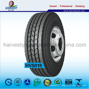 Tubeless TBR Tires