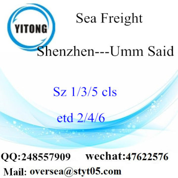 Shenzhen Port Sea Freight Shipping para Umm Said