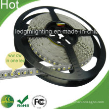 SMD3528 120LEDs/Meter LED Cct Adjustable LED Strip with CE, RoHS