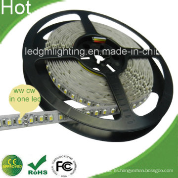 SMD3528 120LEDs / Metro LED Tira LED ajustable Cct con CE, RoHS