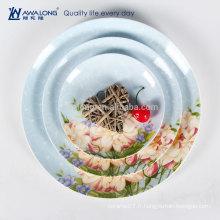Conception personnalisée de style naturel Fine Bone China Porcelaine Plats et plats à la porcelaine