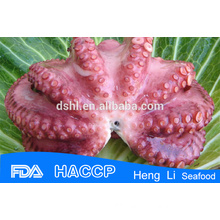 Frozen big octopus from china